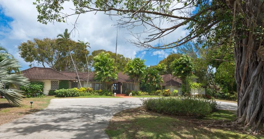 Solandra, Sandy Lane, Barbados